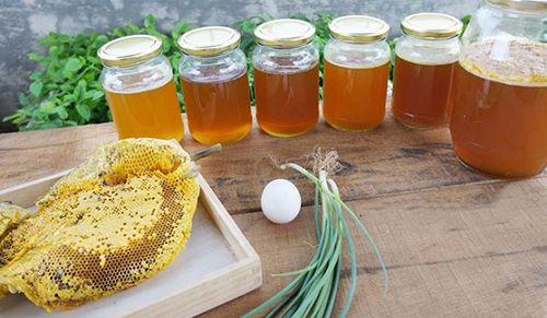 mật ong và sáp ong