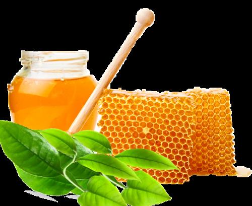trà xanh, mật ong - sự kết hợp hoàn hảo