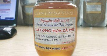mật ong hoa cà phê 500ml