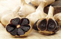 Lợi ích của tỏi đen tới sức khoẻ con người