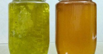Mật ong hoa bạc hà so với mật ong khác