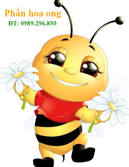 bao nhiêu tiền 1 kg phấn hoa