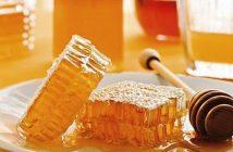 sự thật mật ong nhiễm thuốc trừ sâu